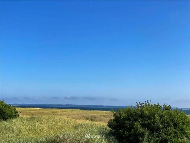 323 Marine View Drive, Ocean Shores, WA 98569 (#1645661) :: Pickett Street Properties