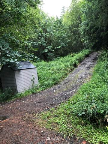 137 Toby Mine Road, Morton, WA 98356 (#1645804) :: Ben Kinney Real Estate Team