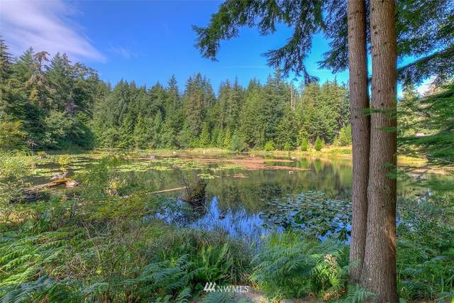 57 Lily Pad Lane, Orcas Island, WA 98279 (#1645866) :: NextHome South Sound
