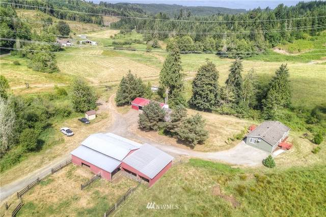 297 Reinke Road, Centralia, WA 98531 (#1645881) :: NextHome South Sound