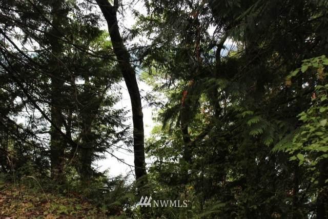 2 NE Capstan Rock Road, Tahuya, WA 98588 (#1646009) :: Ben Kinney Real Estate Team
