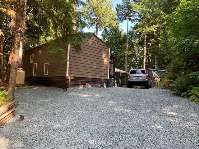 44821 Kachess Trail, Concrete, WA 98237 (#1646119) :: Ben Kinney Real Estate Team