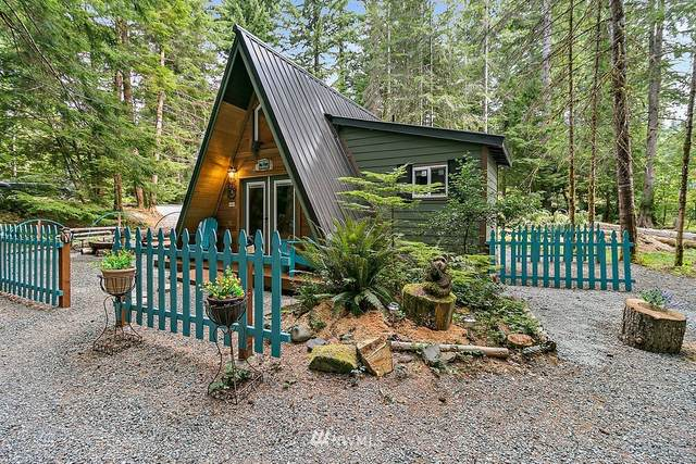 218 Paradise Drive, Ashford, WA 98304 (#1646692) :: My Puget Sound Homes