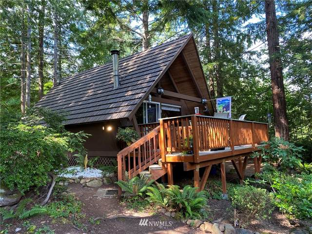 51 Birch Court, Brinnon, WA 98320 (#1646780) :: NextHome South Sound
