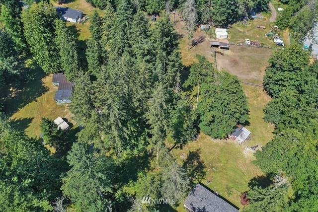 2 318th Street E, Graham, WA 98338 (#1647765) :: The Robinett Group