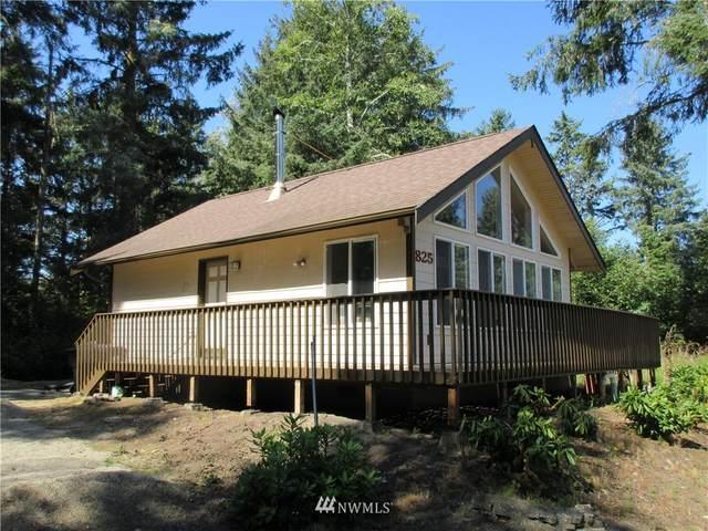 825 Duck Lake Drive NE, Ocean Shores, WA 98569 (#1648145) :: Urban Seattle Broker