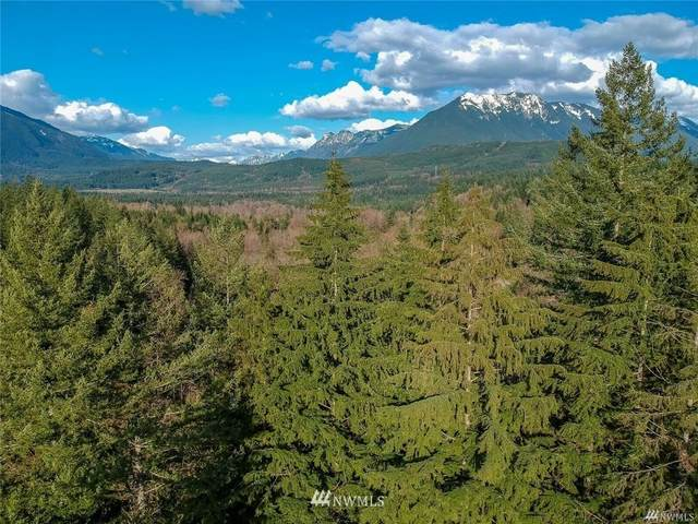 0 SE Edgewick Rd ( 2 Acres), North Bend, WA 98045 (#1648541) :: Becky Barrick & Associates, Keller Williams Realty