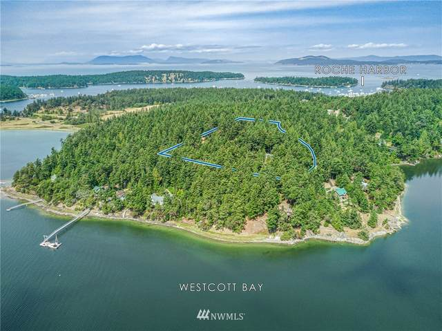 740 White Point Road, San Juan Island, WA 98250 (#1648579) :: Pacific Partners @ Greene Realty