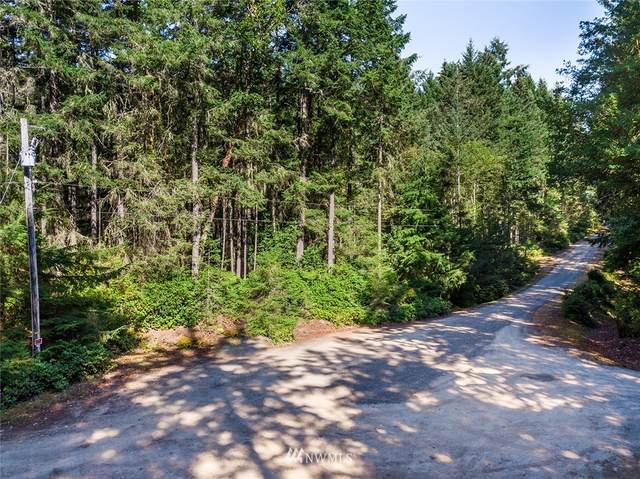 0 31st Avenue NW, Gig Harbor, WA 98332 (#1650262) :: Better Properties Lacey