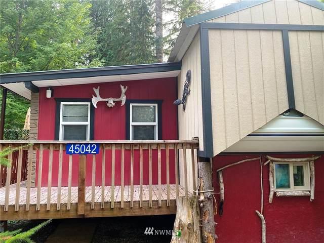 45042 Kachess Trail, Concrete, WA 98237 (#1651043) :: McAuley Homes