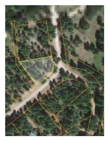57 E Fawn Creek Road, Winthrop, WA 98862 (#1651307) :: McAuley Homes