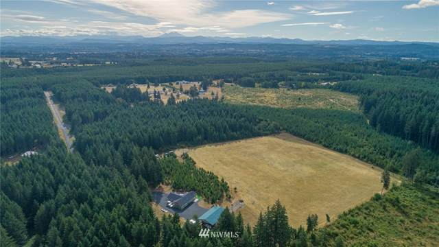 0 Duchess Lane, Winlock, WA 98596 (#1651371) :: Hauer Home Team
