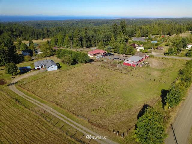 9999 Black Bear Trail, Port Angeles, WA 98362 (#1651978) :: Pacific Partners @ Greene Realty