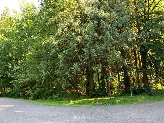 13001 Shuksan Rim Drive, Glacier, WA 98244 (#1652076) :: Engel & Völkers Federal Way