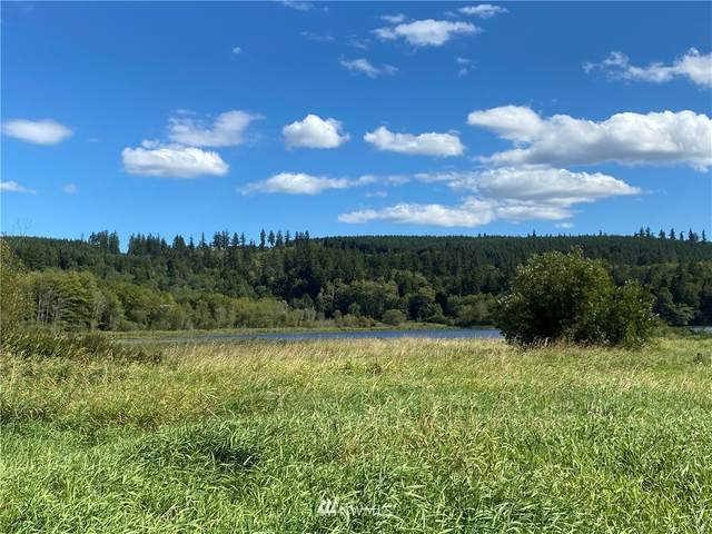 212 Lake View Drive, Quilcene, WA 98376 (#1652197) :: Better Properties Real Estate