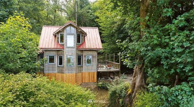 12825 SW Ober Beach Road, Vashon, WA 98070 (#1652487) :: Ben Kinney Real Estate Team