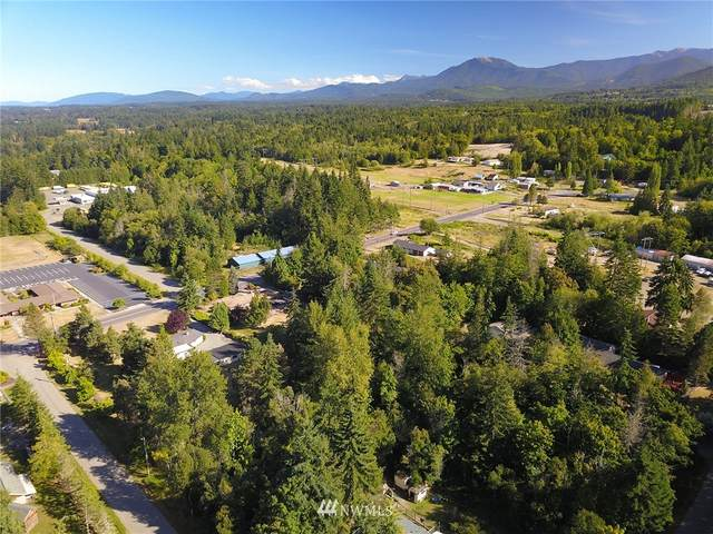9999 Hughes Road, Port Angeles, WA 98362 (#1653290) :: Ben Kinney Real Estate Team