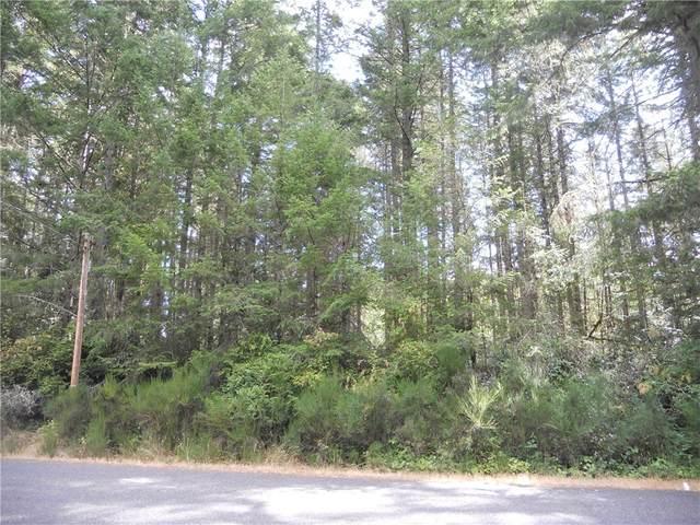 11503 Lake Josephine Avenue, Anderson Island, WA 98303 (#1654079) :: McAuley Homes