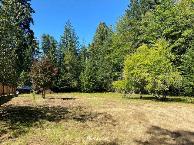 0 SE Old Arcadia Road, Shelton, WA 98584 (#1654116) :: Better Homes and Gardens Real Estate McKenzie Group