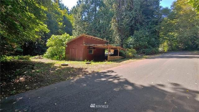 481 N Olympic Trails Drive, Lilliwaup, WA 98555 (#1654228) :: NextHome South Sound