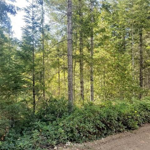 0 NE Dewatto Hills Road, Tahuya, WA 98588 (#1654301) :: Ben Kinney Real Estate Team