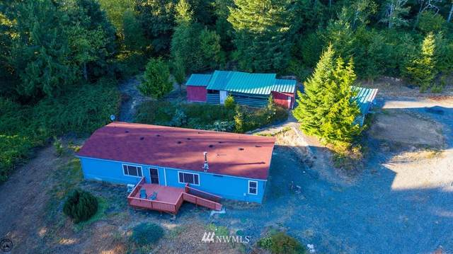 784 Teitzel Road, Centralia, WA 98531 (#1654816) :: Becky Barrick & Associates, Keller Williams Realty