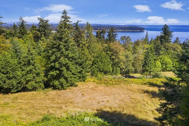 2378 Oak Bay Road, Port Hadlock, WA 98339 (#1654885) :: Ben Kinney Real Estate Team
