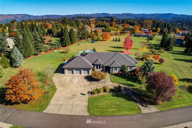 18113 NE 201st Court, Brush Prairie, WA 98606 (#1654933) :: Ben Kinney Real Estate Team