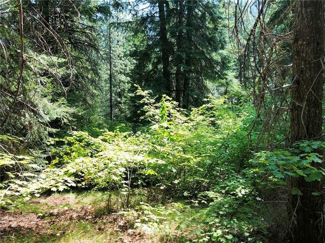 0 Second Creek Road, Leavenworth, WA 98826 (#1655029) :: Pickett Street Properties