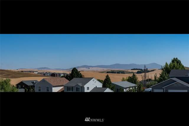 440 Terrview Drive NW, Pullman, WA 99163 (#1655516) :: Lucas Pinto Real Estate Group