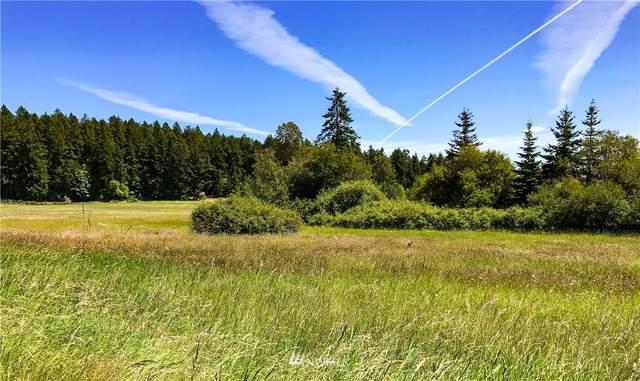 238 Judith Lane (Lot 3), Orcas Island, WA 98280 (#1655858) :: Urban Seattle Broker