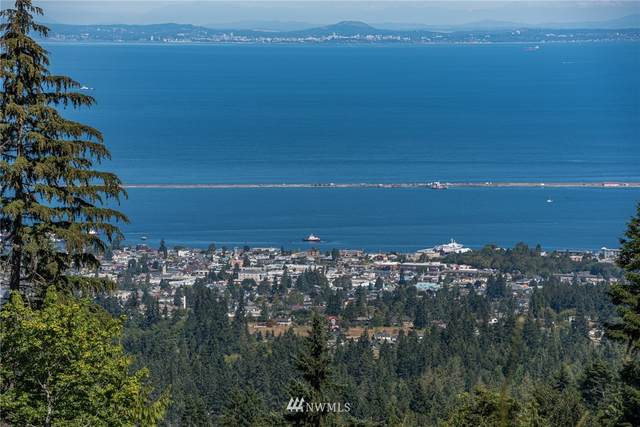 9999 S Old Mill Road, Port Angeles, WA 98362 (#1655999) :: Pacific Partners @ Greene Realty