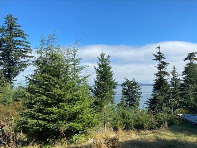 36 Coastline Drive, Orcas Island, WA 98279 (#1656262) :: NextHome South Sound
