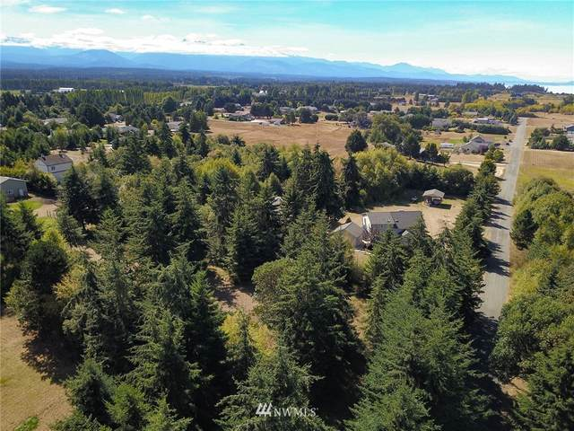 9999 Klahhane Road, Sequim, WA 98382 (#1656353) :: Pacific Partners @ Greene Realty