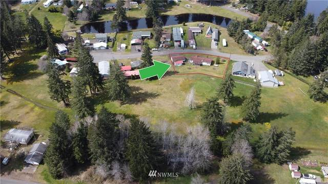 87 W Fairway Drive, Elma, WA 98541 (#1656397) :: NW Home Experts