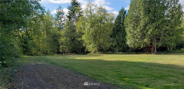 3350 E Rasor Road W, Belfair, WA 98528 (#1656529) :: McAuley Homes