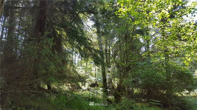 0 Lot 22  Mt Baker View Tracts, Orcas Island, WA 98279 (#1656946) :: McAuley Homes