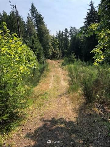 9999 Trail Wood Drive, Brinnon, WA 98320 (#1656969) :: Hauer Home Team