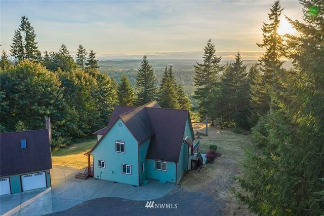 173 Smokey Ridge Road, Onalaska, WA 98570 (#1657165) :: NextHome South Sound