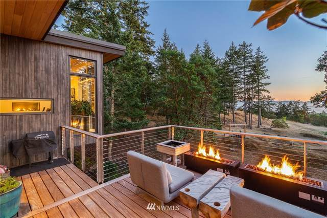 330 Evergreen Lane, San Juan Island, WA 98250 (#1657738) :: NextHome South Sound