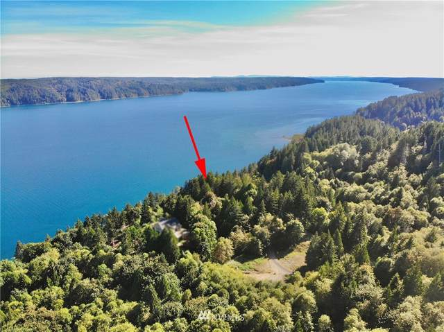 298 N Shar Lane, Lilliwaup, WA 98555 (MLS #1658031) :: Community Real Estate Group