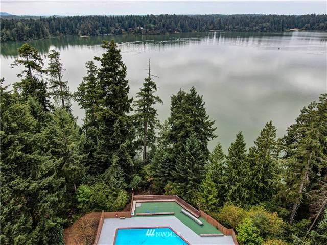 22343 Blue Lake Court SE, Yelm, WA 98589 (#1658181) :: Ben Kinney Real Estate Team