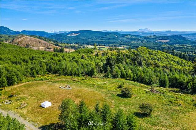 0 State Route 508, Onalaska, WA 98533 (MLS #1658277) :: Community Real Estate Group