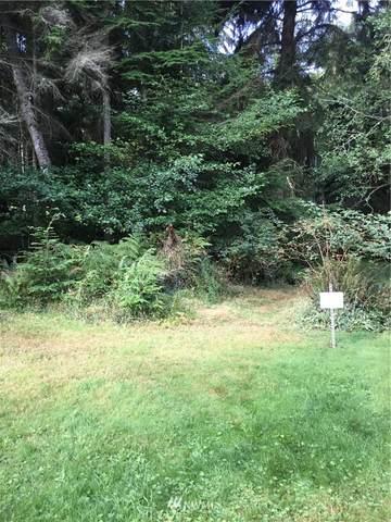 51 E Alder View Ln, Greenbank, WA 98253 (#1658469) :: Ben Kinney Real Estate Team