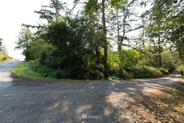 0 Moonlight Drive, Friday Harbor, WA 98250 (#1658579) :: Capstone Ventures Inc