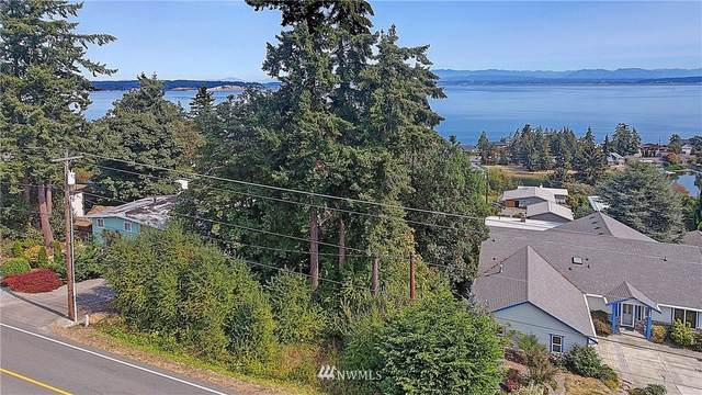 0 E Camano Drive, Camano Island, WA 98282 (#1659075) :: Better Homes and Gardens Real Estate McKenzie Group