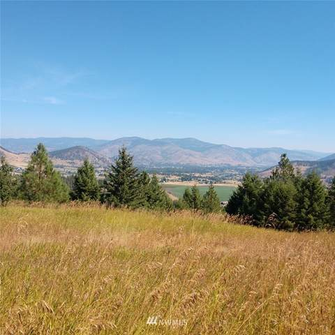 279 4th Of July Creek Road, Danville, WA 99121 (#1659449) :: Hauer Home Team