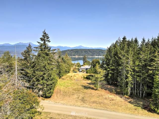 4046 Great Bend Drive, Union, WA 98592 (#1659575) :: Ben Kinney Real Estate Team