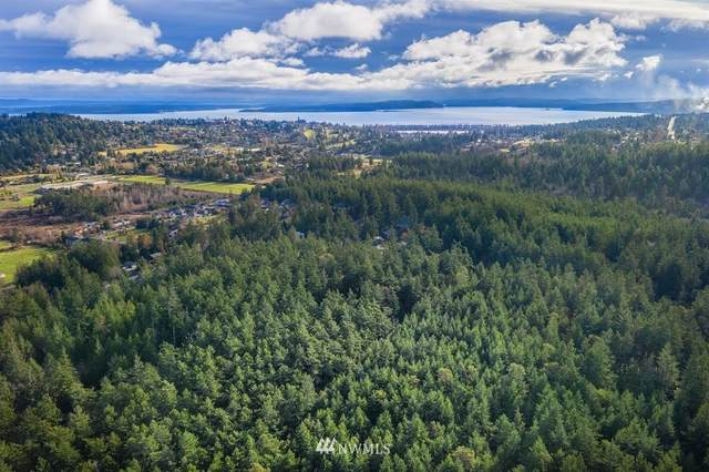 4400 Cleveland Street, Port Townsend, WA 98368 (#1659923) :: Alchemy Real Estate