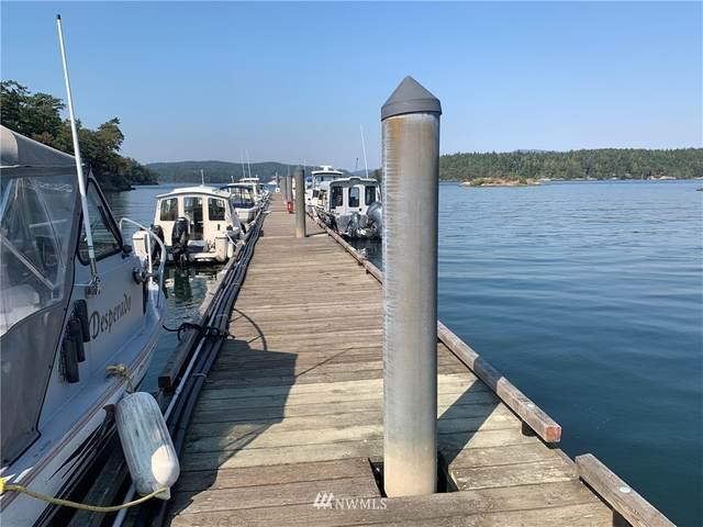 283 Sylvan Circle, Shaw Island, WA 98286 (#1659942) :: Mike & Sandi Nelson Real Estate